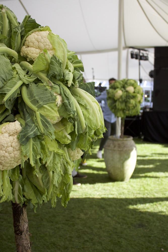Cauliflower Trees